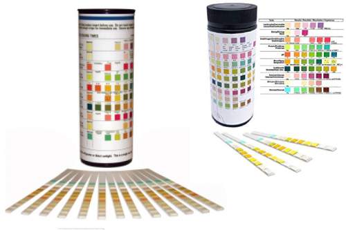 Urine Strips Test Kit